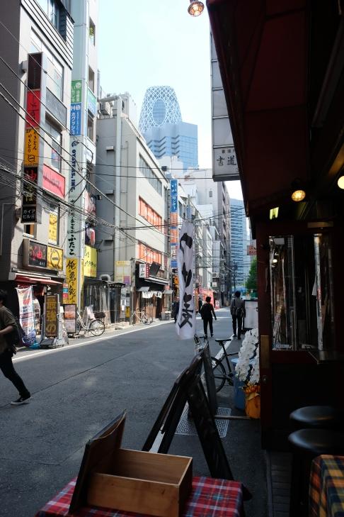 Tempat berburu makanan di Shinjuku, namun bagi yang muslim hati-hati, banyak yang tidak halal.