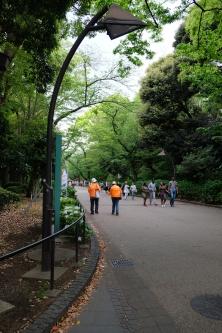 Ueno Park, Jika musim Hanami (Sakura) atau musim Autumn, taman ini ramai dikunjungi wisatawan
